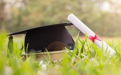 Graduation cap and diploma on sunny day in a field of grass