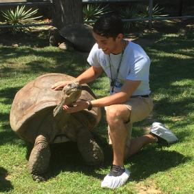 Kennymac Durante with a large tortoise