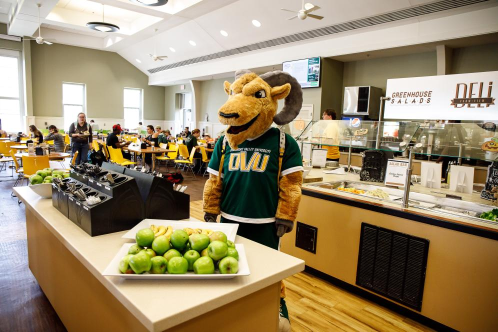 The mascot in the dining hall looking at green apples.