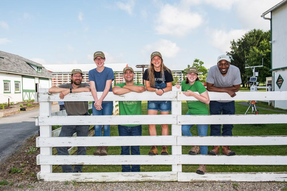 six students standing on a fence smiling