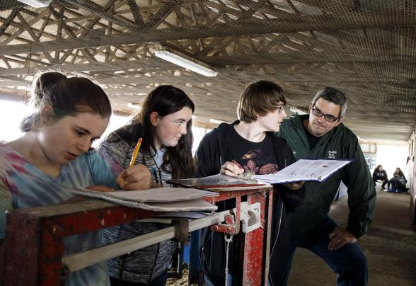Students taking notes in the livestock barn with a professor