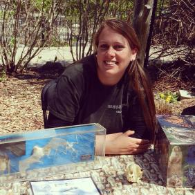 A student working in Maryland teaching conservation