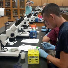 Students working with microscopes in a lab.