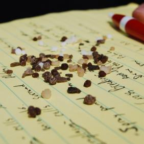 A close-up photos of notepaper with notes, a pen and some grains of dirt