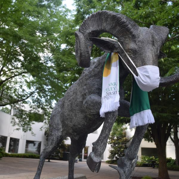 The Ram statatue wearing a DelVal scarf and a white face scout mask.