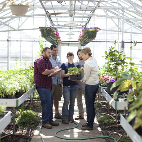 In a greenhouse, four students and an instructor in a living classroom.
