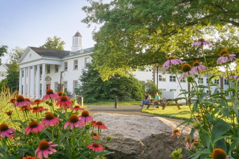 Best Of The Valley 2021 The Princeton Review Names Delaware Valley University to the 2021