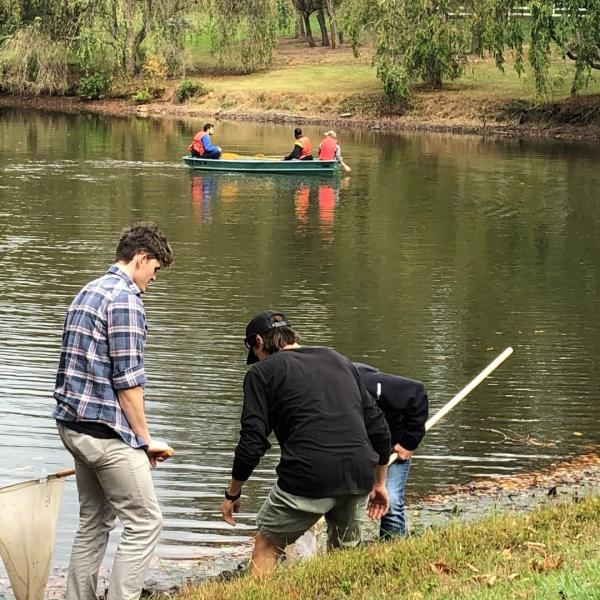 Students on the edge of a lake with nets.