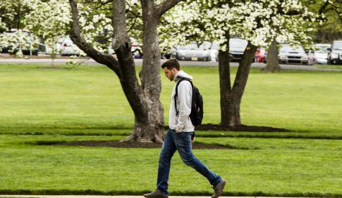 Male student walking across campus with white and pink flowering dogwood trees in background.