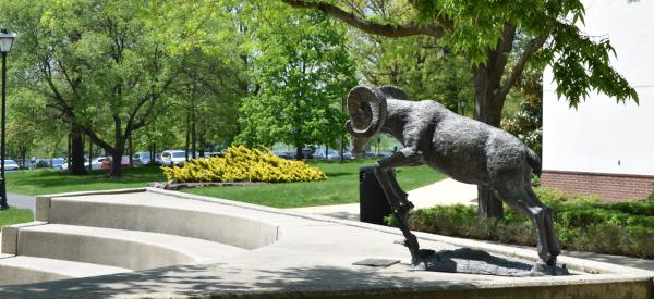 Ram statue outside of the student center.