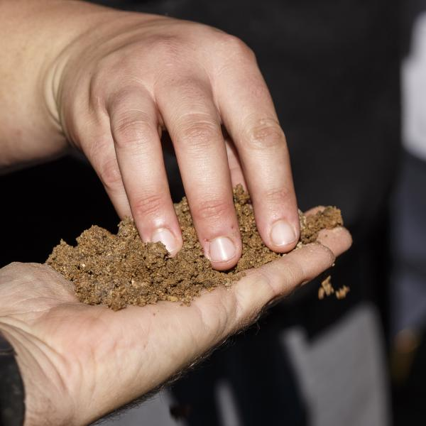 a hand is holding soil while another hand touches it