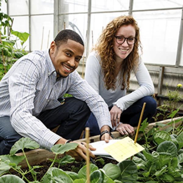 2 students working in a greenhouse