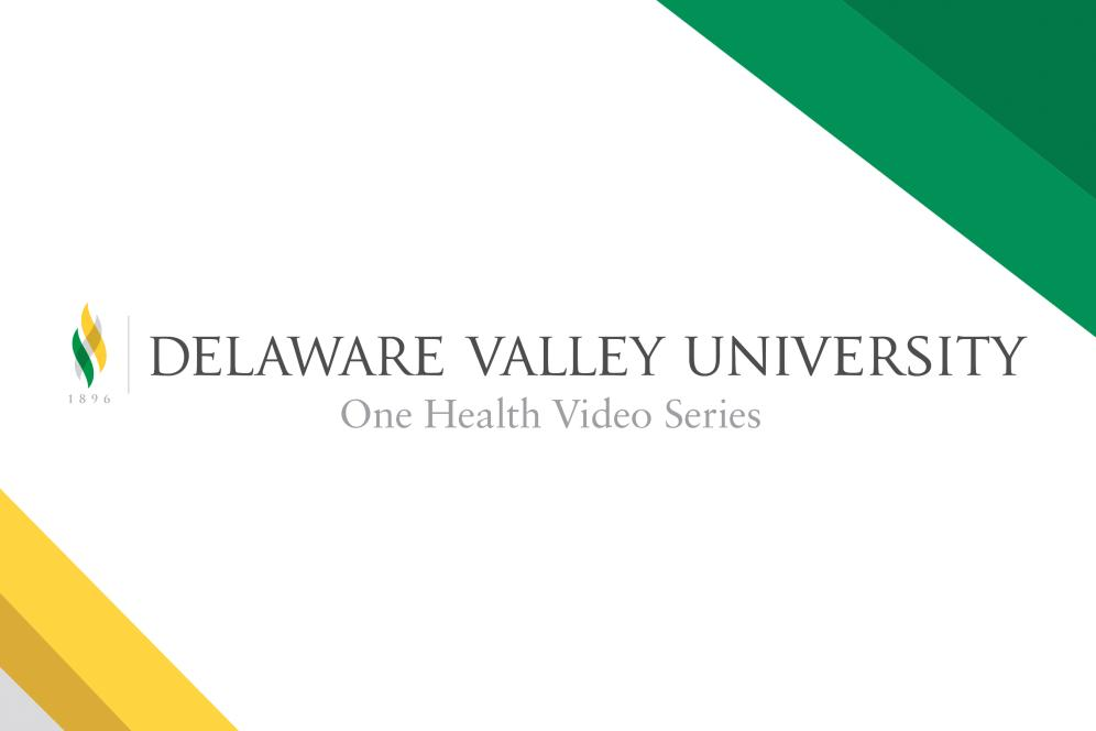 One Health video cover image.